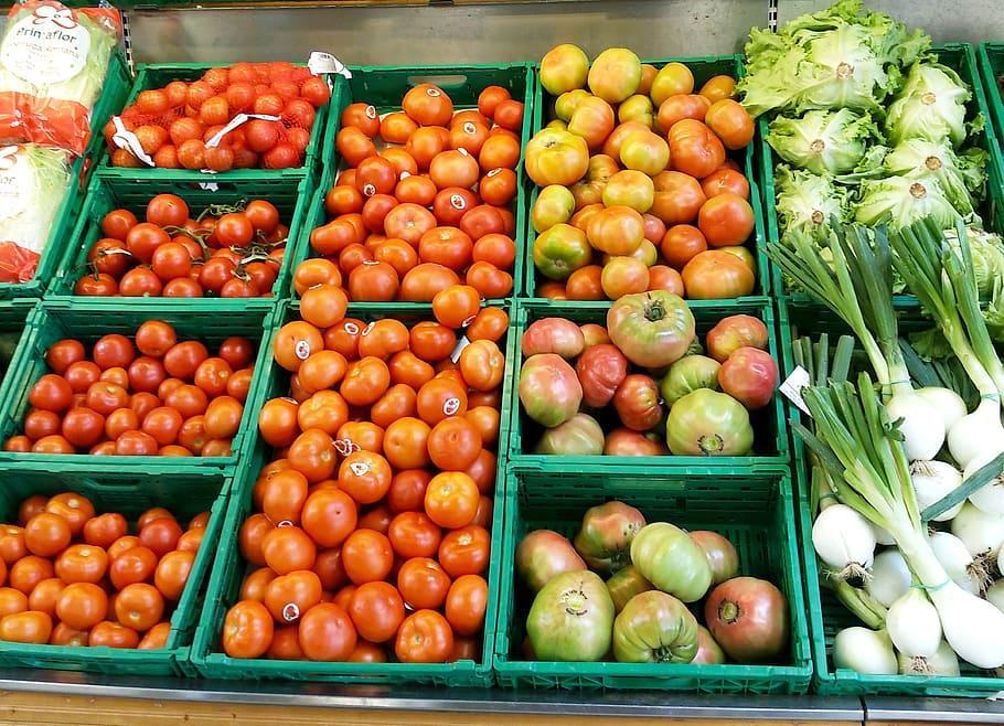 Экологичные и экономичные коробки для пищевых продуктов
